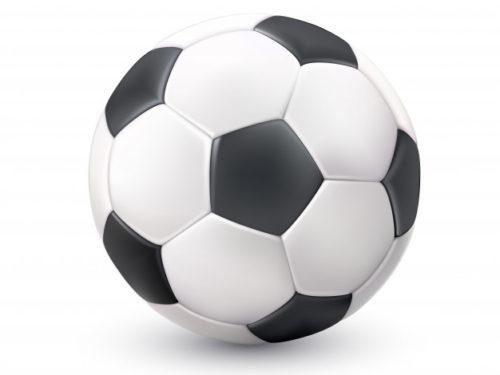 Dotacje dla klubów sportowych przyznane. Ile otrzymały kluby?