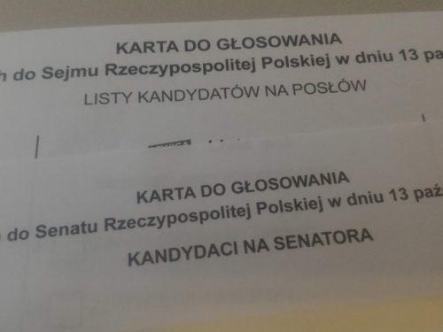Wyniki wyborów: PiS wygrywa w powiecie rawskim. PSL na drugim miejscu