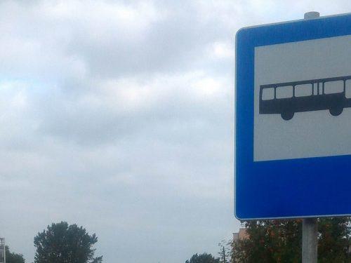 (ROZKŁAD) Ruszył pilotaż drugiej linii autobusowej. Teraz dojedziesz na targowisko miejskie i w okolice firmy Logis