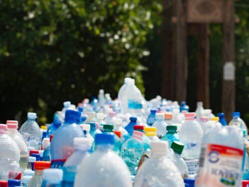 Jak poprawnie segregować śmieci w Rawie Mazowieckiej?