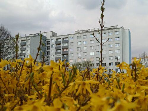 Ceny mieszkań w Łodzi cały czas rosną. Jak będą kształtować się ceny mieszkań w Łodzi w 2021 roku?