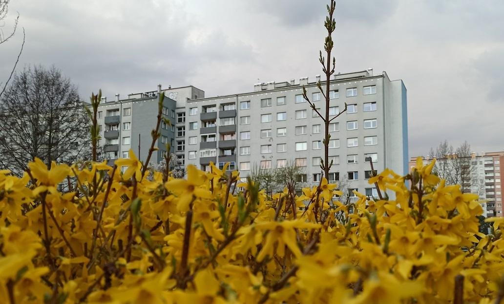 Ceny mieszkań w Łodzi w 2021 roku
