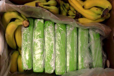 Narkotyki ukryte w bananach pojechały z centrum logistycznego pod Rawą do sklepów w Warszawie