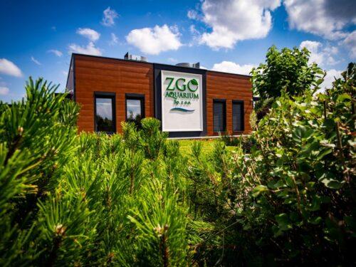 """""""Drzewko za surowce"""" ekologiczna akcja ZGO Aquarium"""